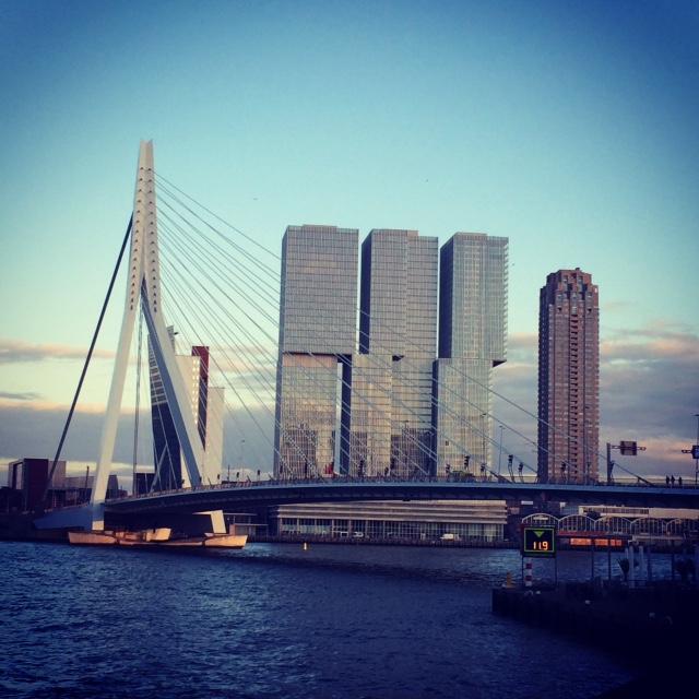 pont rotterdam